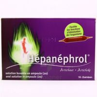 HEPANEPHROL, solution buvable en ampoule à Libourne