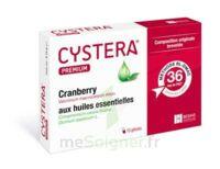 CYSTERA PREMIUM, bt 10 à Libourne