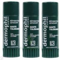 Dermophil indien haute tolérance stick lèvres lot de 2 + 1 offert à Libourne