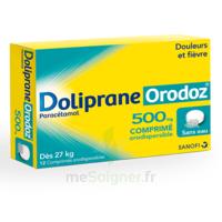 Dolipraneorodoz 500 Mg, Comprimé Orodispersible à Libourne