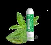 PURESSENTIEL RESPIRATOIRE Inhalation nasal 19 huiles essentielles à Libourne