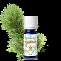 Puressentiel Huiles Essentielles - Hebbd Pin Sylvestre Bio* - 5 Ml à Libourne