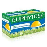 Euphytose Comprimés Enrobés B/120 à Libourne