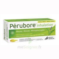 PERUBORE Caps inhalation par vapeur inhalation Plq/15 à Libourne