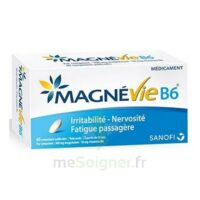 Magnevie B6 100 Mg/10 Mg Comprimés Pelliculés Plaq/60 à Libourne