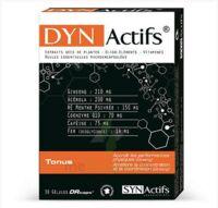 Synactifs Dynactifs Gélules B/30 à Libourne