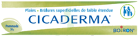Boiron Cicaderma Pommade à Libourne