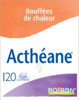 Boiron Acthéane Comprimés B/120 à Libourne